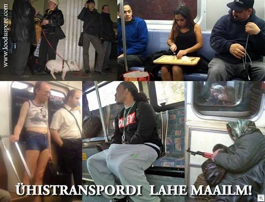 Rapla-maakonna-uhistransport-reisijate-vedu