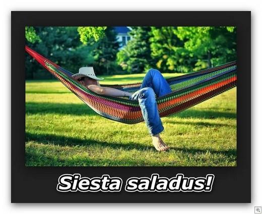 SIESTA-Eesti-moodi