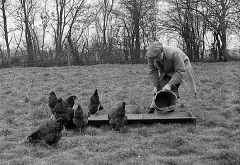 kanade-sootmine-soot-sooda-toidu-nou-kuna