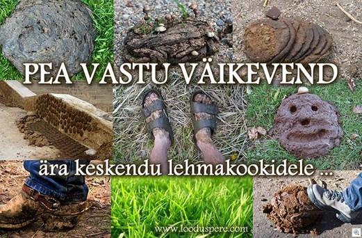 Pea-vastu-vaike-eesti-eestlane