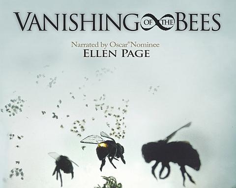 Mesilased-mesilane-murk-pestitsiid-pestitsiidid